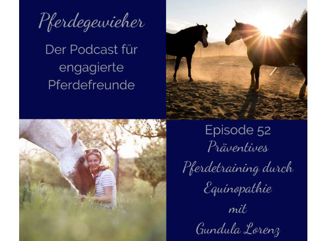 Podcast: Präventives Pferdetraining durch Equinopathie
